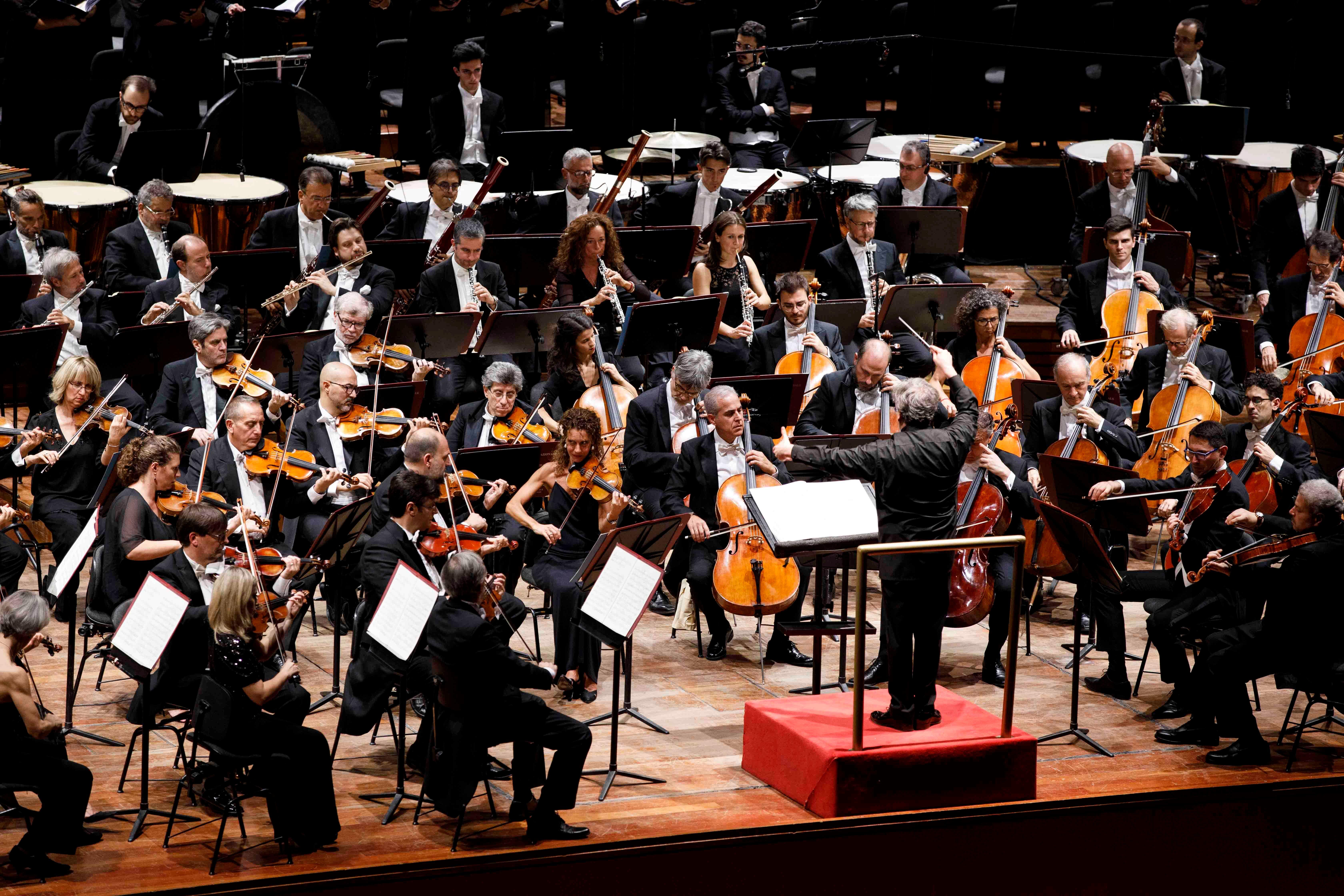 © Auditorium Parco della Musica di Roma